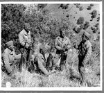 [Japanese American Soldiers in the field]