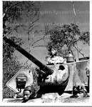 Sherman Tank manned by Chinese American Soldiers