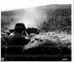 Japanese American Soldiers Spraying Hillside
