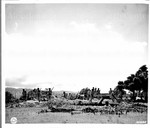 [troops on formation under palm trees in Hawaii]