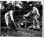 Shortly after arriving in Australia and while awaiting assignment members of the first unit of colored nurses to arrive in SWFA start a victory garden.
