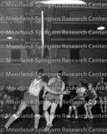 Basketball - Teams - Lichman Bears vs Washington Brewers 1