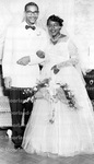 Weddings - Johnson